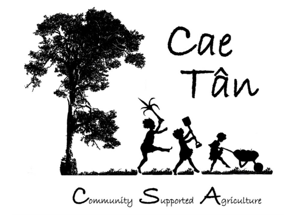 Cae Tan postcard front